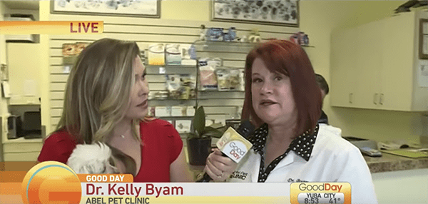 screenshot of Dr. Byam on Good Day tv show being interviewed in the office by a blonde woman in red dress